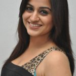 Aksha Pardasany Age,Biography,Height, Weight, Wiki,Husbend, Family, Profile